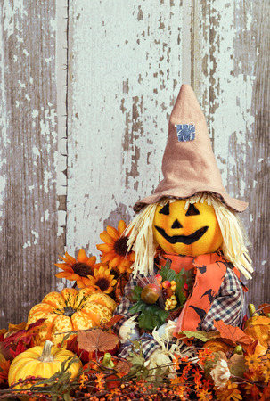 Cute scarecrow surrounded by autumn decorative gourds and flowers against wooden texture background photo