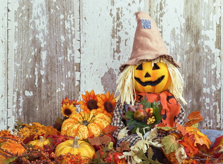 Cute scarecrow surrounded by autumn decorative gourds and flowers against wooden texture background