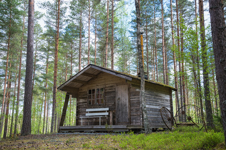 Oude houten hut in het bos