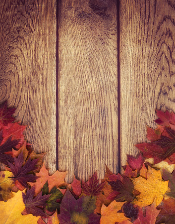 Autumn leaves border against wooden background. Fall background with copy space.