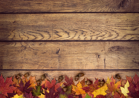 estaciones del año: Hojas de otoño y bellotas en el fondo de madera rústica. Otoño de fondo con copia espacio.