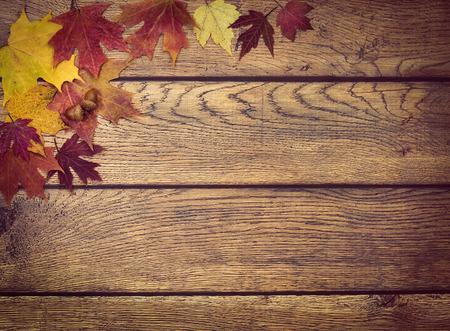 素朴な木製の背景にドングリと紅葉。秋の背景コピー スペースに。