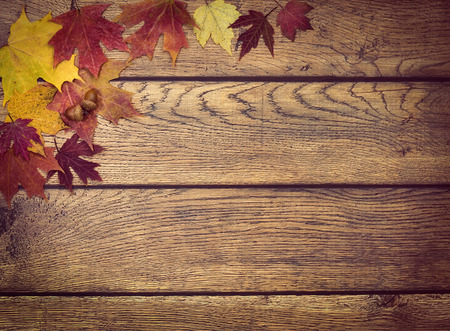Autumn leaves and acorns on rustic wooden background. Fall background with copy space.