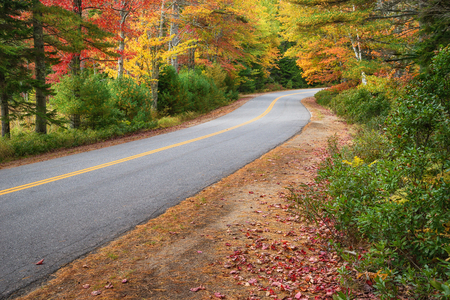 Winding road curves through colorful autumn trees in New England 版權商用圖片