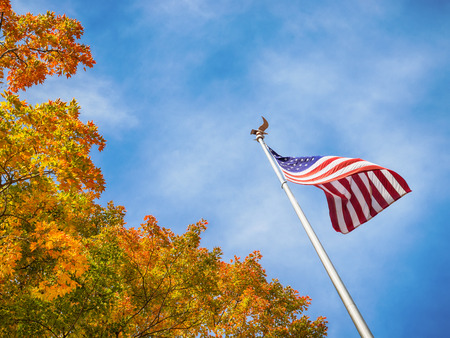 eagle falls: American flag waving in the wind with beautiful golden autumn tree tops. Blue sky in the background with copy space. Stock Photo