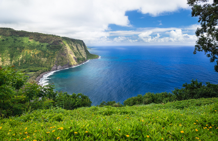 valley view: Waipio Valley Lookout view on Big Island, Hawaii Stock Photo