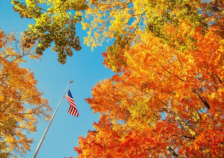 American flag waving in the wind with beautiful autumn foliage tree tops against blue sky