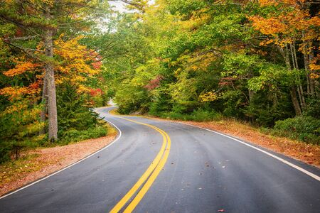Winding road curves through scenic autumn foliage trees in New England. 写真素材