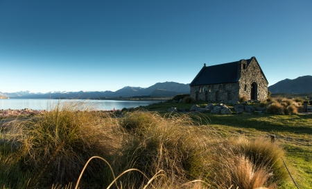 Lake Tekapo  South Island, New Zealand photo