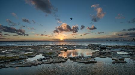 tasman: Sunset at La perouse, Sydney