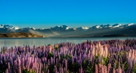Mooi landschap zuiden eiland, Nieuw-Zeeland