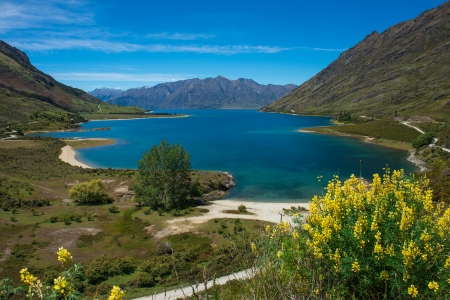 Beautiful landscape south island, New Zealand photo