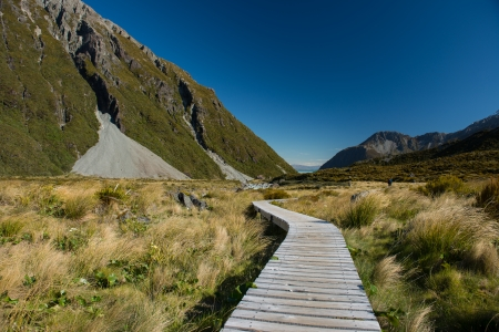 aspiring: Landscape of New Zealand  Stock Photo