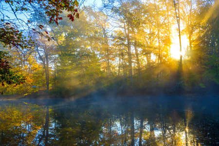Cold but amazing morning on the lake with sunlight and mist in October
