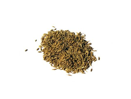 Cumin Seeds on a Plain White Background
