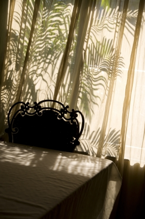Shadow play in a sunlit room with backlight