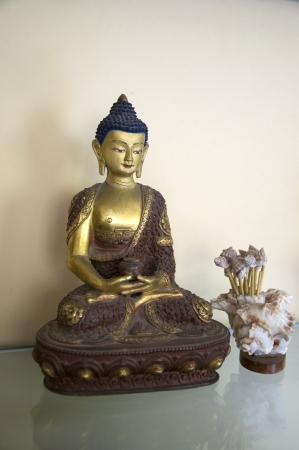 samadhi: A beautiful statue of Amitabha Buddha sitting on a Lotus Base