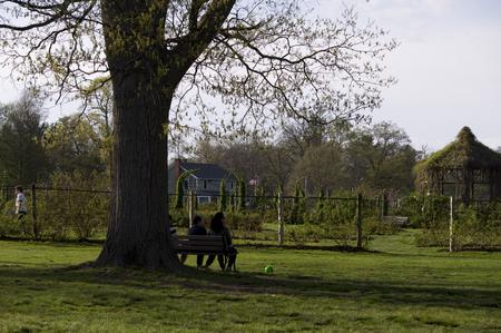 Elizabeth Park Twelve: Evening time - Mensen ontspannen op een tuinbank Stockfoto