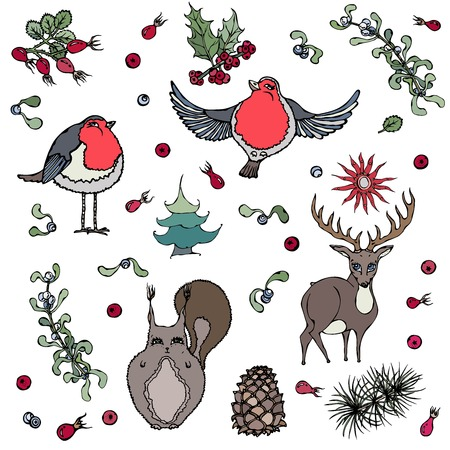 rose hips: Cute cartoon style hand drawn illustration.Set of multi color forest animals and birds, surrounded with branches of pine tree, cone, mistletoe, rose hips, star, berry.Isolated on white, editable.