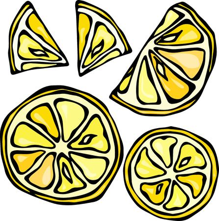 Collection of Lemons, Isolated on White Background, Doodle Style Vector Illustration. Illustration