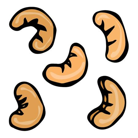Cashew Nuts Seamless. Doodle Style Vector Design, Isolated on White Background.