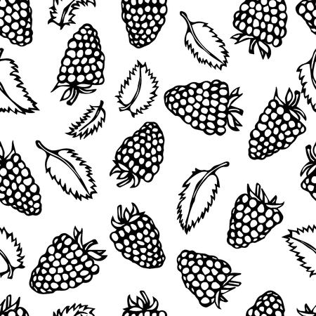 Raspberry and Mint Leaves Doodle Style Vector Sketch, Isolated on White Background. Vetores