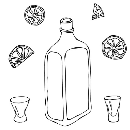 scotch whisky: Whiskey Cognac or Brandy Bottle and Shot Glass Sketch. With Citrus. Drink Time Hand Drawn Vector Illustration. Illustration