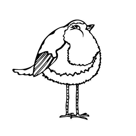 Isolated On a White Background Doodle Cartoon Hand Drawn Sketch Vector. Cute Adorable Bird.