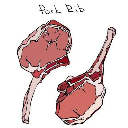porcine: Row Pork Ribs. Realistic Vector Illustration Isolated Hand Drawn Doodle or Cartoon Style Sketch. Fresh Meat Cuts.