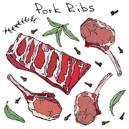 Row Pork Ribs and Herbs. Realistic Vector Illustration Isolated Hand Drawn Doodle or Cartoon Style Sketch. Fresh Meat Cuts.