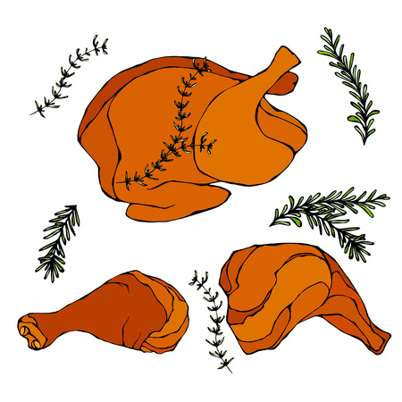 Fried Chicken or Turkey Full Carcass. Cooked Fowl Meat. Vector Illustration Isolated On a White Background. Realistic Hand Drawn Doodle Style Sketch.