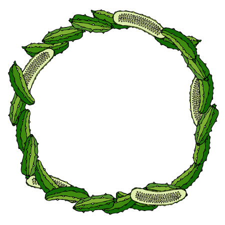 Wreath or Round Frame with Green Cucumbers or Gherkin and Half of Cucumber Hand Drawn Illustration Doodle Style.