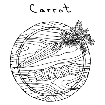 Fresh Orange Carrots with Leaves on a Cutting Wooden Board and Wave Shape Slices. Ripe Vegetables. Vegetarian Cuisine. Salad Ingredient. Realistic Hand Drawn Illustration. Savoyar Doodle Style Ilustração