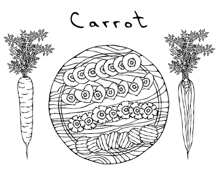 Fresh Orange Carrots with Leaves on a Cutting Wooden Board. Different Cuts of Carrot. Heart Shape Slices. Ripe Vegetables. Salad Ingredient. Realistic Hand Drawn Illustration. Savoyar Doodle Style