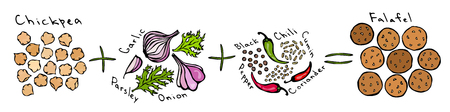 Recipe Falafel Diy Instruction Manual. Chickpea Onion Garlic Parsley Black and Chili Pepper Cumin, Coriander. Vegetables, Herbs. Realistic Hand Drawn Illustration. Vettoriali