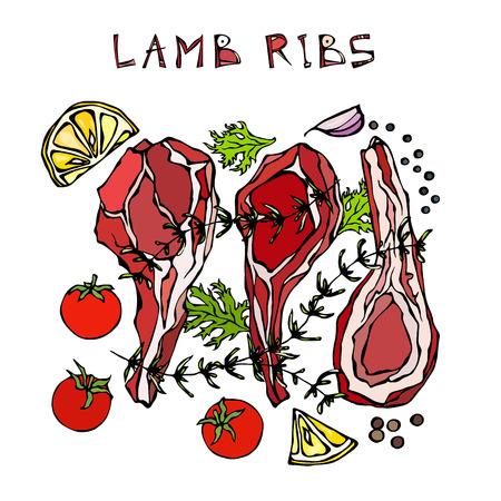 Lamsribbetjes met kruiden, citroen, tomaat, peterselie, tijm, peper. Vleesgids voor slagerij of steakhouse-restaurantmenu. Hand getrokken illustratie. Doodle stijl
