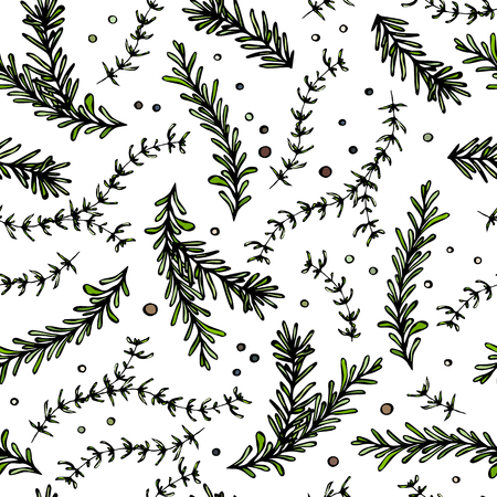 Pepper, Rosemary and Thyme Seamless Endless Vector Background. Fresh Green Herbs for Meat, Steak or Seafood Cooking. Hand Drawn Illustration. Doodle Style Illustration
