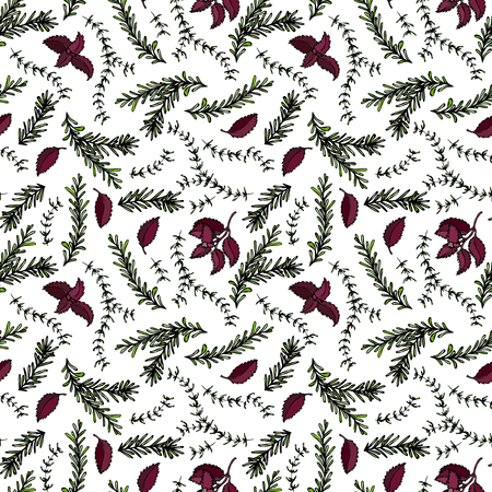 Seamless Endless Pattern of Rosemary Branch, Red Basil and Sage. Background with Aromatic Healing Herb. Steak Meat Spice. Hand Drawn Illustration. Savoyar Doodle Style