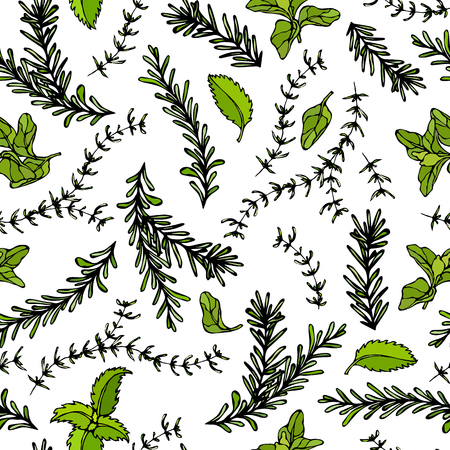 Seamless Endless Pattern of Rosemary Branch, Basil, Marjoram and Sage. Background with Aromatic Healing Herb. Steak Meat Spice. Hand Drawn Illustration. Savoyar Doodle Style  イラスト・ベクター素材