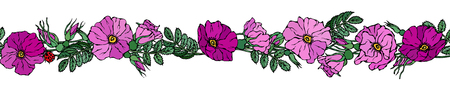 Endless Brush Border with Wild Roses. Summer Flowers Greeting Card or Wedding Background. Hand Drawn Illustration. Doodle Style
