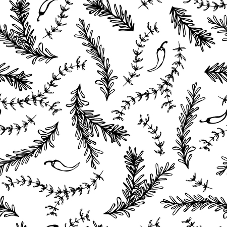 Chilli Pepper, Rosemary and Thyme Seamless Endless Vector Background. Fresh Green Herbs for Meat, Steak or Seafood Cooking. Hand Drawn Illustration. Doodle Style