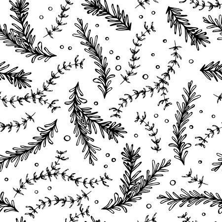 Pepper, Rosemary and Thyme Seamless Endless Vector Background. Fresh Green Herbs for Meat, Steak or Seafood Cooking. Hand Drawn Illustration. Doodle Style
