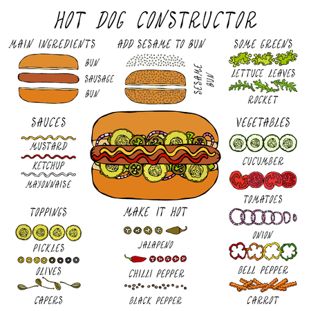 Hot Dog Constructor. Set of Fast Food Menu Ingredients. Hand Drawn High Quality Clean Realistic Vector Illustration. Doodle Style.