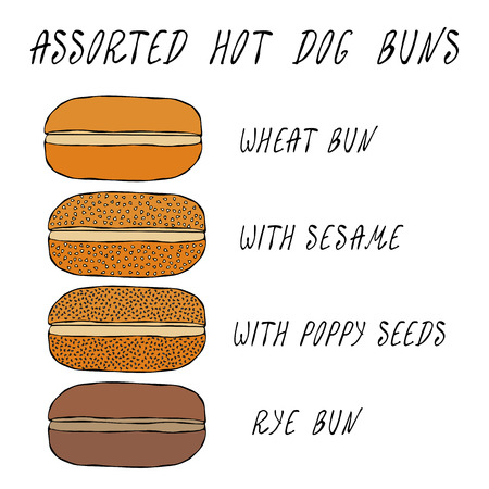 Set of Assorted Hot Dog Buns. Wheat Bun with Sesame, Poppy Seeds, Rye Bun. For Fast Food, Restaurant or Bar Menu. Hand Drawn High Quality Clean Vector Realistic Illustration. Doodle Style. Illustration