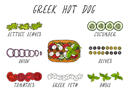 Greek Hot Dog Ingredients Constructor. Feta Cheese, Basil. Olives, Lettuce Salad, Tomato, Cucumber. Fast Food Collection. Hand Drawn High Quality Vector Illustration. Doodle Style Foto de archivo - 115030378