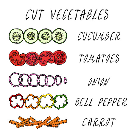 Cut Vegetable Set. Cucumber, Tomato, Onion Rings, Bell Pepper, Carrot. Coocing Ingredients. Fresh Harvest. Food Collection. Realistic Hand Drawn High Quality Vector Illustration. Doodle Style 일러스트