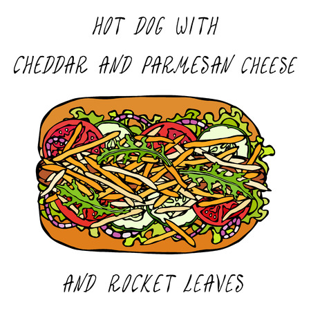 Hot Dog with Cheddar and Parmesan Cheese, Rocket, Lettuce Salad, Tomato, Cucumber, Onion Rings. Fast Food Collection. Realistic Hand Drawn High Quality Vector Illustration. Doodle Style Illustration