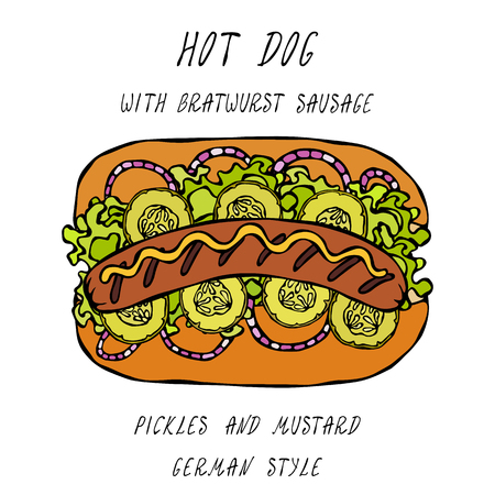 German Style Hot Dog Bratwurst Sausage, Lettuce Salad, Pickled Cucumber, Mustard. Fast Food Collection. Realistic Hand Drawn High Quality Vector Illustration. Doodle Style
