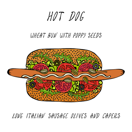 Hot Dog on a Bun with Poppy Seeds. Long Italian Sausage, Olives, Capers, Rocket, Lettuce Salad. Fast Food Collection. Realistic Hand Drawn High Quality Vector Illustration. Doodle Style