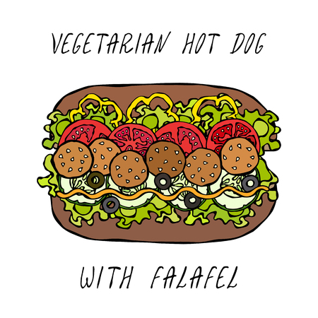 Vegetarian Hot Dog with Falafel. Belle Pepper, Tomato, Olives, Mustard, Lettuce Salad, Rye Bun. Fast Food Collection. Realistic Hand Drawn High Quality Vector Illustration. Doodle Style